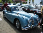1Waldi Jaguar.JPG